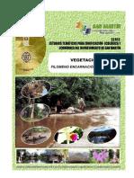 Vegetación_2007