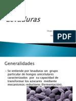 Expo Levaduras (1)