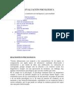TÉCNICAS DE EVALUACIÓN PSICOLÓGICA