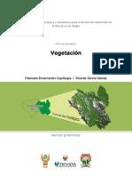 Satipo vegetación