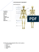 Osteoporosis Worksheet