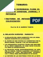 1°clase - ECOLOGIA MICROBIANA