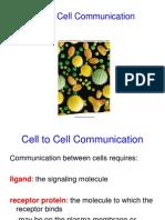 celltocellcommunication-101021235148-phpapp01
