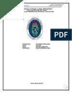 502221296.UNIDAD N° 4 Oferta, Demanda y Precios del Petroleo