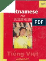 Vietnamese for Beginners