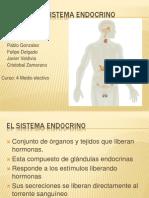 el-sistema-endocrino-1224396295238568-8-100903143157-phpapp02