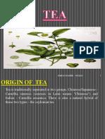 Tea Human Geography