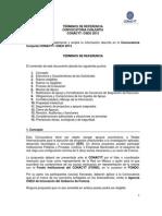 OSEO-CONACYT.pdf