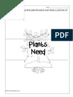 4 Things Plants Need