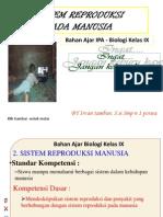 Reproduksi SMP