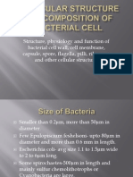 Bacteral Cell