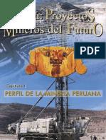 Proyectos en El Peru