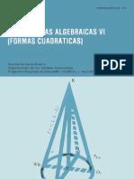 ESTRUCTURAS ALGEBRAICAS VI.pdf