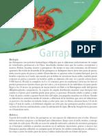 Biologia de Las Garrapatas