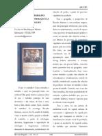 os sentidos do trabalho -resumo.pdf
