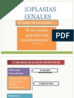 30 - 2R neoplasias renales