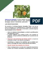 Limoncillo(Mamoncillo)-Quenepa Un Anticancerigeno Natural