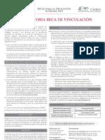 vinculacion_2013