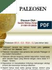 Paleosen (Sunthi Wahyu Kinanthi)