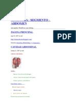 Abdomen-Topografia (Parece Completo)