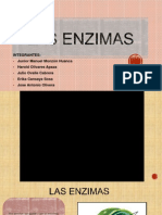 LAS ENZIMAS CTA.pptx
