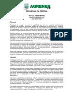Pegagodia da energia.pdf
