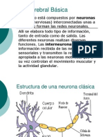 Química cerebral Básica