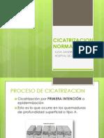 6 Clase Cicatrizacion