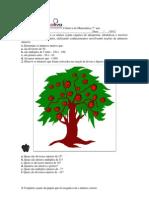 Coletiva de Matemática 7° ano (20-08-12)