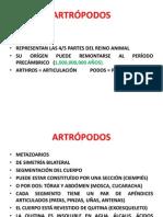 ARTRÓPODOS Y SERPIENTES.UAT