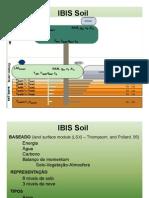 IBIS Soil