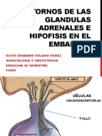Trastornos de Las Glandulas Adrenales e Hipofisis En