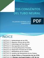 Defectos Congenitos Del Tubo Neural