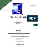 02 Guía del Auditor