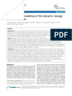 Mathematical Modeling of the Dynamic Storage of Iron in Ferritin