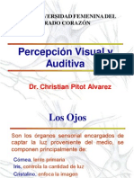 Percepcion Visual y Auditiva