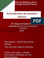 5ta Clase Miembro Inferior - Vasos, Nervios y Articulaciones - Dr. Enriquez