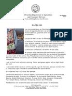 Caracteristicas de La Manzana