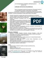 Convocatoria_Coordinador_ServiciosEcosistémicos_Sep13revPSS-CAS