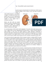 Nefrologia_1a lezione.pdf
