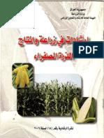 ارشادات في زراعة الذرة الصفراء