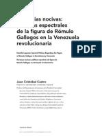Sobre GALLEGOS en la Revolución Bolivariana.