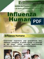 Influenza-Virus de La Gripe