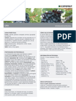 Caracteristicas de La Uva