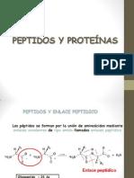 06.Peptidos y Proteinas