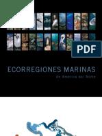 7832 MarineEcoregions-Web Es