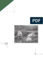 breve aproximación a la gramatica de port Royal.pdf