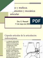 AP19 mecanica articular mano