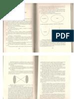 Teorema Do Papagaio Cap 10 a 12