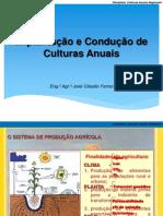 Culturas Anuais Regionais_implantacao
